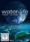 Водная жизнь (3D)
