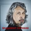 Владимир Сорокин